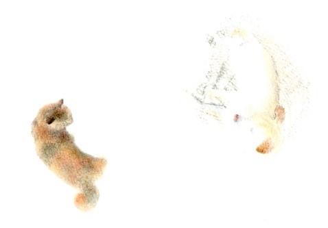 tsukiandsan (Copy).jpg